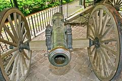 Washington Guns