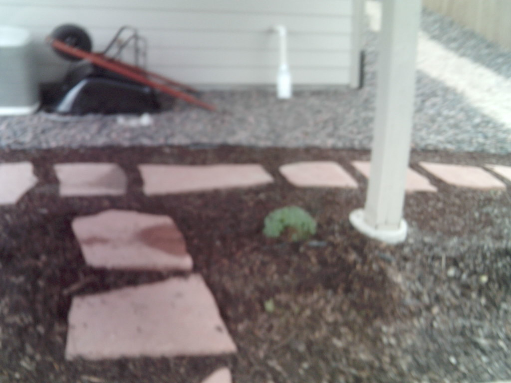 Landscaping, Grade, and Drainage
