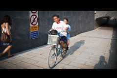 $1000 Fine (michaeljosh) Tags: bicycle singapore fine streetphotography tunnel nobiking 1000fine tamron1750mmf28 nikond90 michaeljosh singaporestreetphotograpy