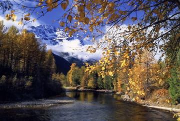 Atnarko in the fall / Photo by Michael Wigle