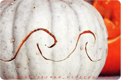 fall 024web
