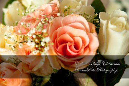 10-30-2010_pink&whiteroses_wm