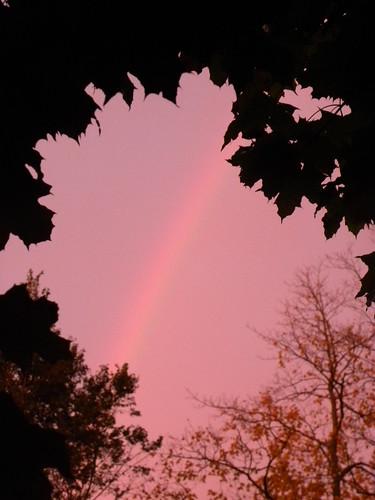 Fairytale Sky