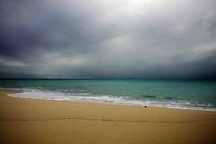 Seychelles Shore - Moody