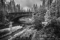 Moose Falls Bridge - Black and White (James Neeley) Tags: bridge blackandwhite bw landscape nikon yellowstonenationalpark wyoming hdr ynp moosefalls photomatix 5xp jamesneeley d3s