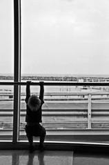 training (francesca sara) Tags: water island holidays eau wasser europa europe sweden stockholm north medieval unesco porto gamlastan sverige gotland viking acqua blondies isle vacanza suede nord stoccolma visby fårö 2010 medioevo isola svezia hamn ingmarbergman medeltidsveckan birka bionde fårösund vichinghi brygg digerhuvud langhammars gamlehamn nikond80 veneziadelnord legaanseatica francescasara rauken settimanamedievale kaffepannen hullahau sweden2010francescasara