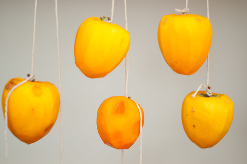 Hanging Persimmons