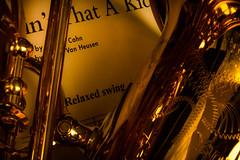 Ain't that a kick- relaxation (Elke Bosma-Prins) Tags: macromondays macro relaxation sax swing music