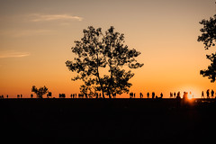 July 3, 2017 (DJ Wolfman) Tags: sunset summer summerinmichigan michigan michiganfavorites holland hollandmi tree orange sun beach july olympus olympuspenf 30mmf35 zd zuiko micro43 people silhouette
