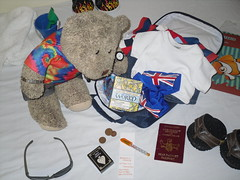 Rummaging (pefkosmad) Tags: teenytinypuzzle 300pieces used secondhand missingpieces incomplete tedricstudmuffin teddy bear ted holibobs tedsholibobs holiday vacation vacances pastime leisure hobby pefkos pefki pefkoi rhodes rodos dodecanese hellas greece greekislands griechenland jigsaw puzzle smuggled cute soft toy animal fluffy softie plush world map earth