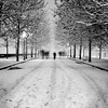 (ozio-bao) Tags: snow canon sigma lucca explore neve 17 70 frontpage 40d challengeyouwinner