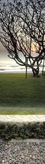 712-Sun Rise at Cha-am Beach (PEERAWAS) Tags: vertical thailand samsung mobilephone verticalpanorama verticalworld verticalphotography verticalcamera