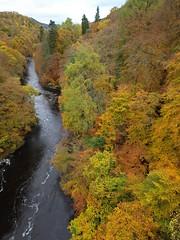 KILLEKRANKIE AUTUMN 09 (Gordon Haws) Tags: autumn trees scotland highlands perthshire autumncolours pitlochry perthandkinross autumnscotland killekrankie pitlochryseasons