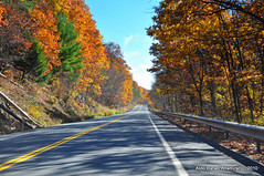 Road (Rafakoy) Tags: road trip blue trees sky white newyork color colour tree green fall colors yellow digital nikon colours pennsylvania oranje paviment d90 nikond90 aldorafaelaltamirano rafaelaltamirano aldoraltamirano