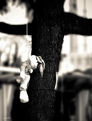 coniglietto suicida @lunapark (xdun) Tags: bw white black milan tree canon flickr milano mj january bn photograph pixel lunapark fotografia albero bianco nero gennaio 2010 giostre coniglio rubbit suicidio mija buffa eos450d blackwhitephotos wwwmijalabnet unrealpixel mijalab mijabuffa