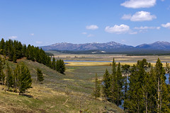 Hayden Valley (bhophotos) Tags: nature river landscape geotagged pentax valley yellowstonenationalpark yellowstone wyoming haydenvalley k110d