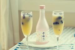 Sake Sunrise (bunbunlife) Tags: pink house home kitchen tangerine breakfast happy japanese frozen bottle berry day juice sunday marion cocktail sake brunch sakura nook sayuri zakka unfiltered