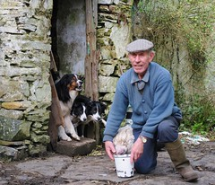 One man & his dogs (& his turkey)!!! (MarsW) Tags: ireland dogs rural turkey farm oldman donegal irlanda dunfanaghy smallfarmers theunforgettablepictures derelicthome gmofree sansogm gentechnikfrei anirishmanshomeishiscastle thewaythosedogsareeyeingupthefoodithinktheturkeyisintrouble