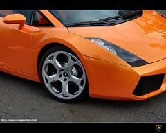 Lamborghini Gallardo II. (FuNS0f7) Tags: hungary hungaroring lamborghinigallardo sonycybershotdscf828 mogyoród exclusivedreamcar