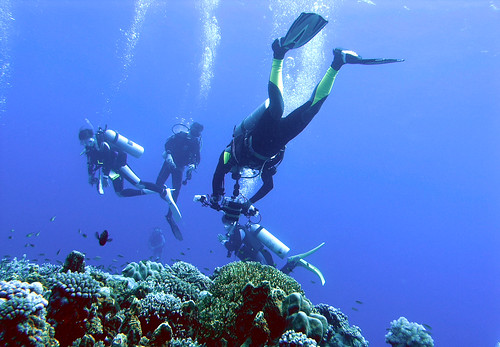 Layang-Layang diving