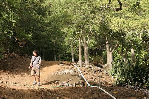 Koko Crater Botanical Garden