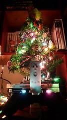 Winter-een-mas tree (Reijard) Tags: tree árbol wintereenmas