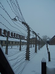 Barbed Wire (Workspace__25) Tags: winter chimney cold sign urn holocaust wire memorial fences poland electrocution gas medical ashes chamber hanging blocks rudolf jews squad auschwitz arbeit barbed crematorium firing frei execution maximilian macht kolbe oswiecim owicim i hss