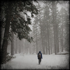 Snow Day! (SLEEC Photos/Suzanne) Tags: trees snow texture girl forest nikon walker snowing snowfall soe tqm d300 blueribbonwinner sanbernardinonationalforest supershot bej topseven mywinners abigfave specialpicture platinumphoto bigbearlakecalifornia diamondclassphotographer flickrdiamond theunforgettablepictures goldstaraward rubyphotographer dragondaggerphoto yourwonderland sailsevenseas terrytexture2 newgoldenseal