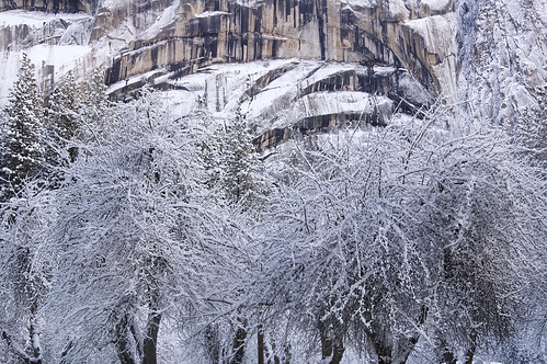 Ice Storm in Yosemite