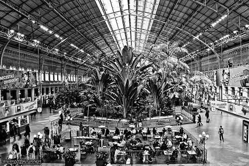 Jardín tropical en Atocha