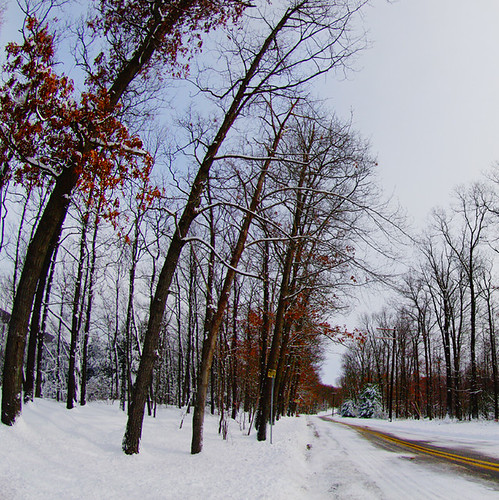 Snowpocalypse III