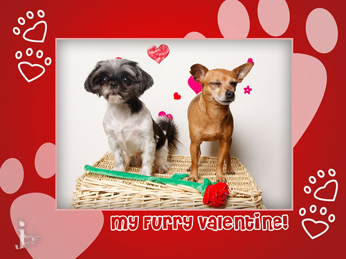 blog-valentine-7