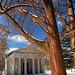 Cincinnati - Spring Grove Cemetery & Arboretum Heavy Branches Over Fleischman's