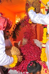 Utsav (Fourth Day), Remanreti (18th Feb, 2010) (Udasin Karshni Ashram / Naresh Swami) Tags: utsav gokul mathura holicelebrations ramanreti udasinkarshniashram swamikarshninaresh nareshswami