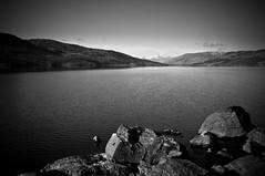 Contrast (GeoY5) Tags: sky bw water contrast scotland trossachs lochkatrine benvorlich