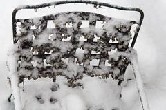 Snow Studies 6