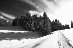 (Christoph Zurbuchen) Tags: landscape schweiz switzerland nikon suisse paysage paysages d90