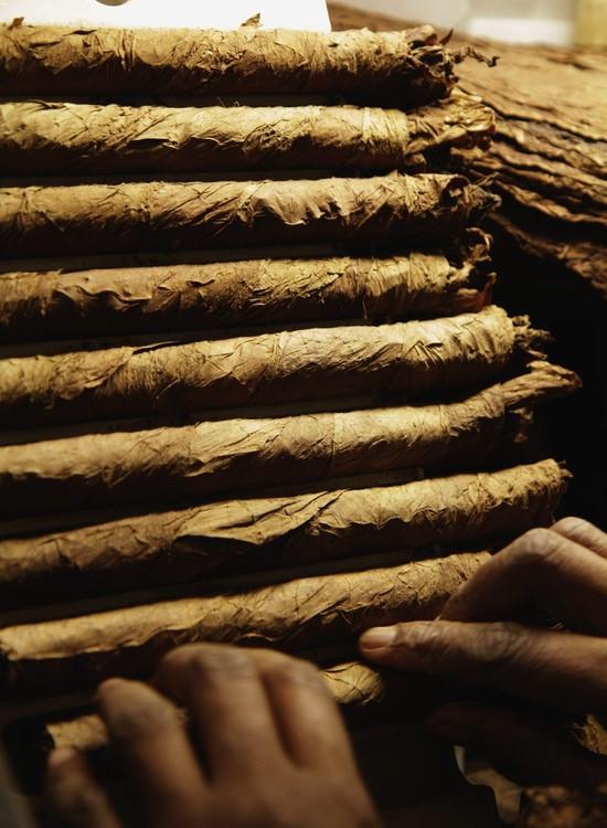 """Эта одна из самых лучших марок кубинских сигар.  На Кубе говорят:  """"Если Вы курите Cohiba - Вы никогда не умрете от..."""