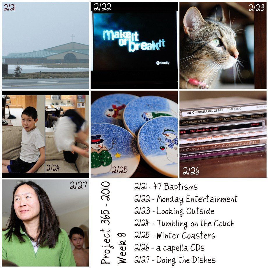 P365 2010 - Week 8