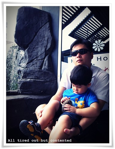 RIMG2046blog