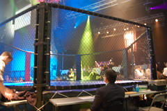 Mixed Martial Arts Cage