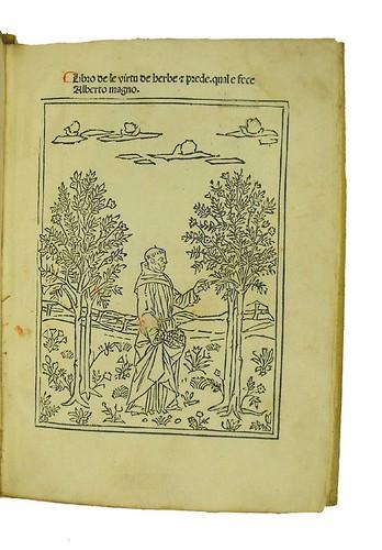 Title-page with woodcut illustration from Albertus Magnus [pseudo-]:  Liber aggregationis, seu Liber secretorum de virtutibus herbarum, lapidum et animalium quorundam