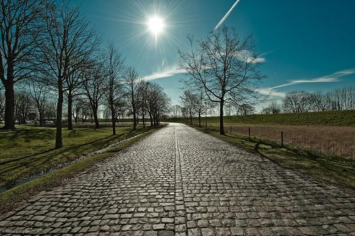 Lillo - Road to