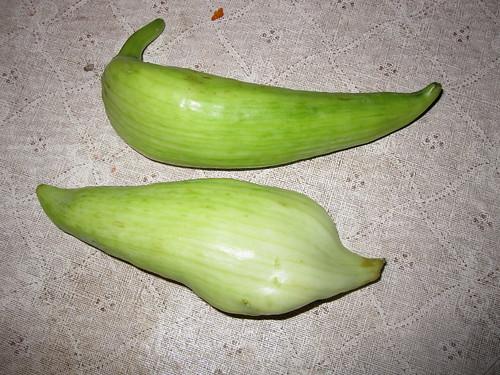 Mystery Vegetables