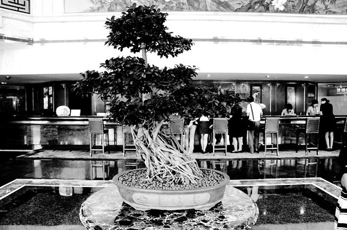 China trip Aug. 2009 067