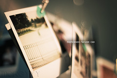 Memories Never Die (margyyy) Tags: 50mm bokeh polaroids hangingmobile