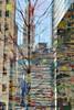 """mural"" by julie mehretu, with reflection (cloudcity) Tags: city newyork reflection building tree art spring mural woolworth goldmansachs juliemehretu 200weststreet"