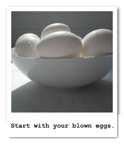 Egg Poloroid