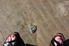 placement (ashleigh290) Tags: beach rock sand walk sandals oregoncoast nailpolish footprint manzanita pinktoenails