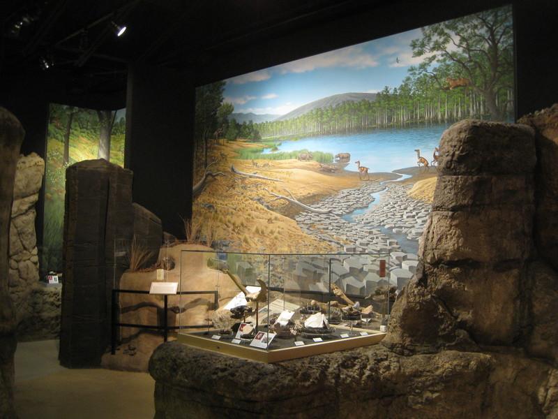 Cenozoic Scenery